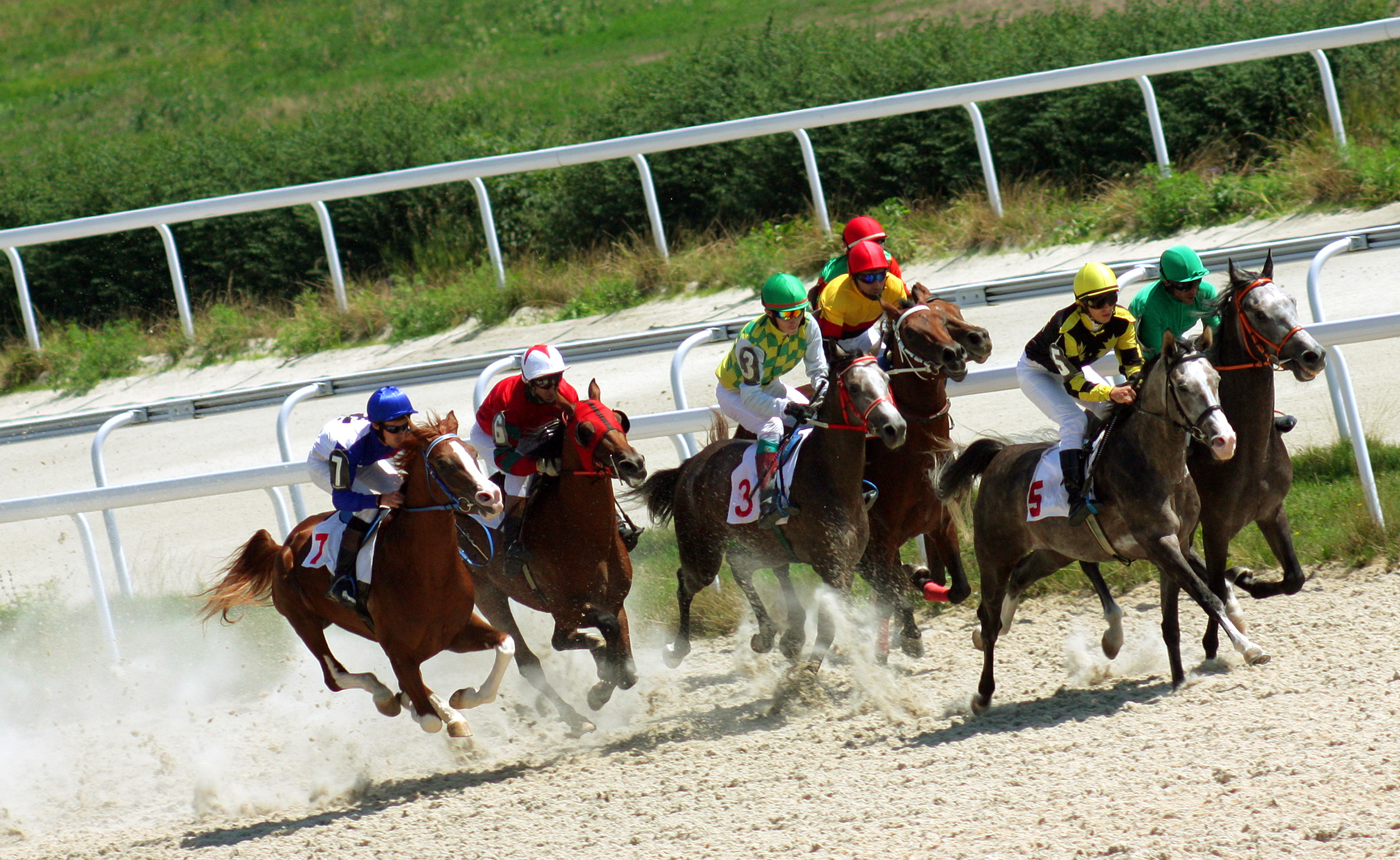 Horse racing for the prize Caucasus, Russia.